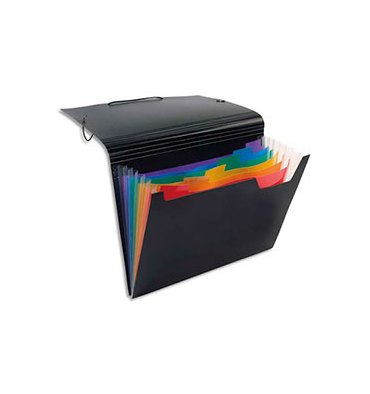 VIQUEL Trieur ménager RAINBOW en polypropylène 7/10. 6 compartiments. Noir intérieur couleur