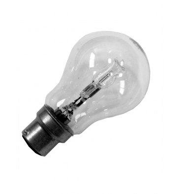 ADES Carton de 10 ampoules Halogène Standard 70W B22