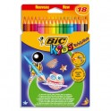 BIC Etui carton de 18 crayons de couleur 17,5cm assortis EVOLUTION