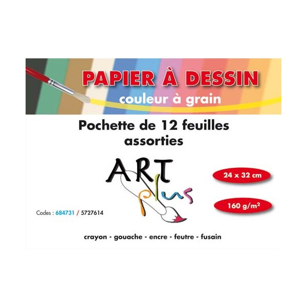 ARTLINE BY CLAIREFONTAINE Pochette de 12 feuilles dessin couleurs assorties 160g format 24 x 32 cm (photo)
