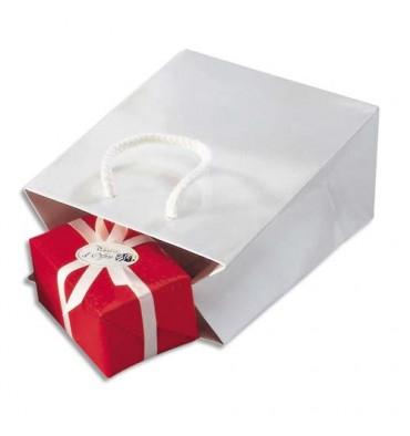 EMBALLAGE Paquet de 25 sacs pelliculés blanc avec poignées cordelières assorties 19 x 27 x 10 cm