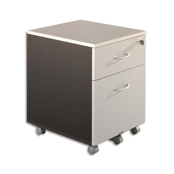 SIMMOB Caisson mobile 2 tiroirs L41 x H56 x P50 cm coloris gris clair/anthracite - L41 x H56 x P50 cm