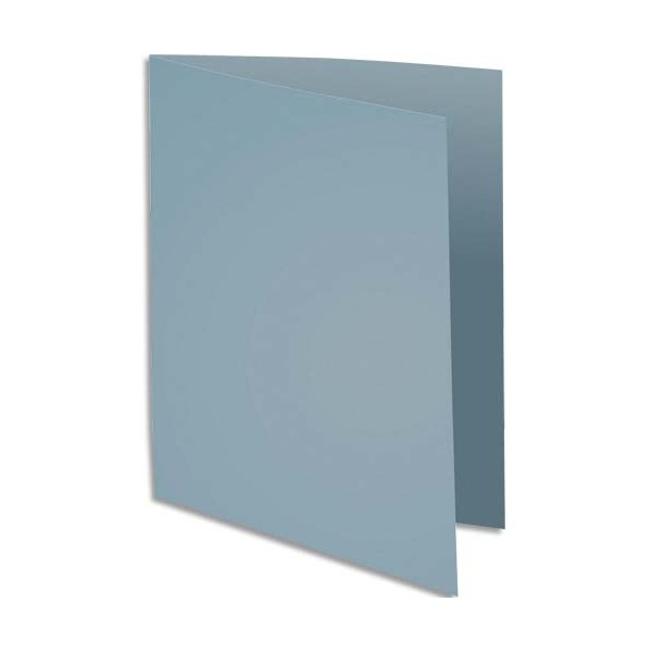 EXACOMPTA Paquet de 100 sous-chemises Rock's en carte 80 g, coloris gris