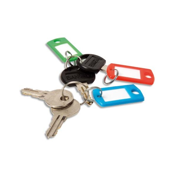 PAVO Boîte de 20 portes clés avec anneaux - Dimensions 5 x 2,2 cm coloris assortis (photo)