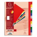 EXACOMPTA Jeu d'intercalaires mensuelles en polypropylène. 12 touches multicolores. Format A4+