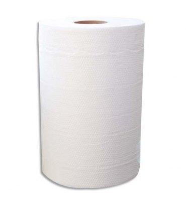 HYGIENE Lot de 2 Bobines d'essuyage 2 plis 150 formats 25 x 19,5 cm - L37,5 m ,bobine D11,5 cm blanc Eco