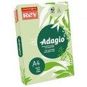 REY BY PAPYRUS Ramette de 250 feuilles papier couleur ADAGIO copieur, laser, jet d'encre 160g A4 vert vif