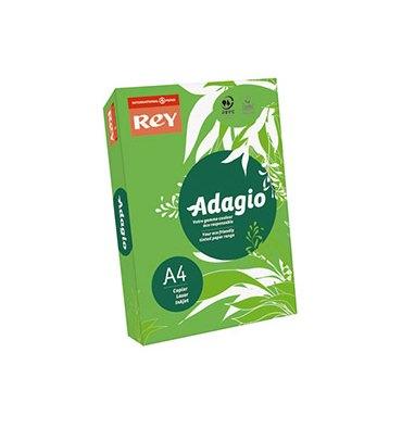 REY BY PAPYRUS Ramette de 250 feuilles papier couleur ADAGIO+ copieur, laser, jet d'encre 160g A4 vert intense