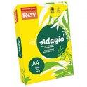 REY BY PAPYRUS Ramette 250 feuilles papier couleur ADAGIO+ copieur, laser, jet d'encre 160 g format A4 jaune intense