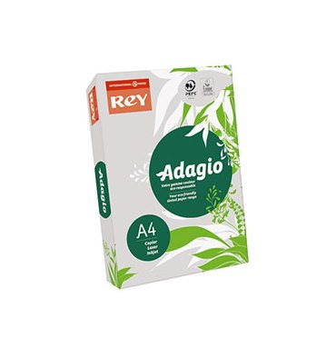 REY BY PAPYRUS Ramette de 500 feuilles papier couleur ADAGIO copieur, laser, jet d'encre 80g A4 gris vif