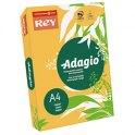REY BY PAPYRUS Ramette 500 feuilles papier couleur ADAGIO+ copieur, laser, jet d'encre 80g A4 abricot intense