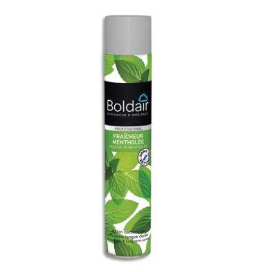 BOLDAIR Désodorisant d'atmosphère 500 ml parfum Fraîcheur mentholée Professional