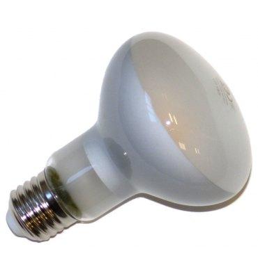 ADES Carton de 10 réflecteurs LED COG dépoli R80