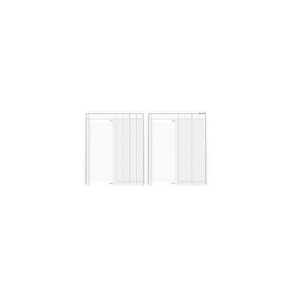 LE DAUPHIN Piqûre trace comptable folioté 24,5 x 31,5 cm 80 pages 4 colonnes