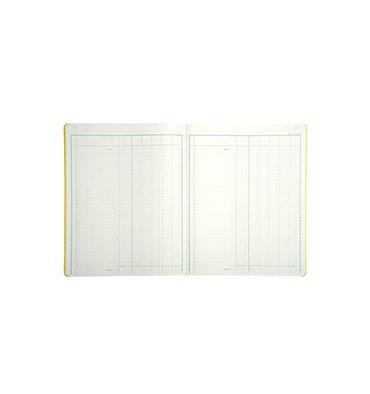 LE DAUPHIN Piqûre trace comptable folioté 24,5 x 31,5 cm 80 pages 6 colonnes