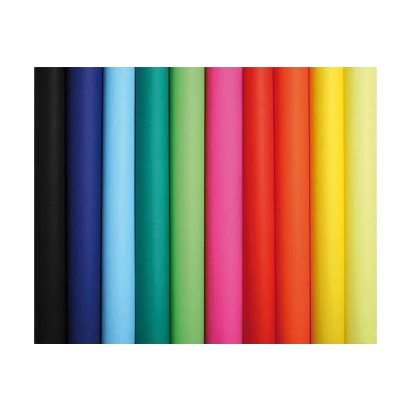 CLAIREFONTAINE Rouleau de 10 feuilles affiche couleur 75g 60 x 80 cm couleurs assorties