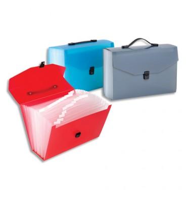 VIQUEL Trieur nomade valise Propyglass translucide à 25 compartiments, coloris assortis