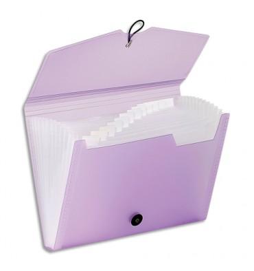 VIQUEL Trieur ménager à 12 compartiments Propysoft coloris assortis translucide poudré
