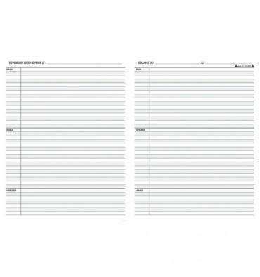LE DAUPHIN Agenda scolaire de l'élève 17 x 22 cm. 39 semaines (2 pages par semaine) avec page emploi du temps