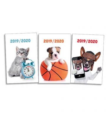 Agenda septembre à septembre 1 jour à la page 320 pages. 12 x 17 cm. Couvertures souple animaux assorties