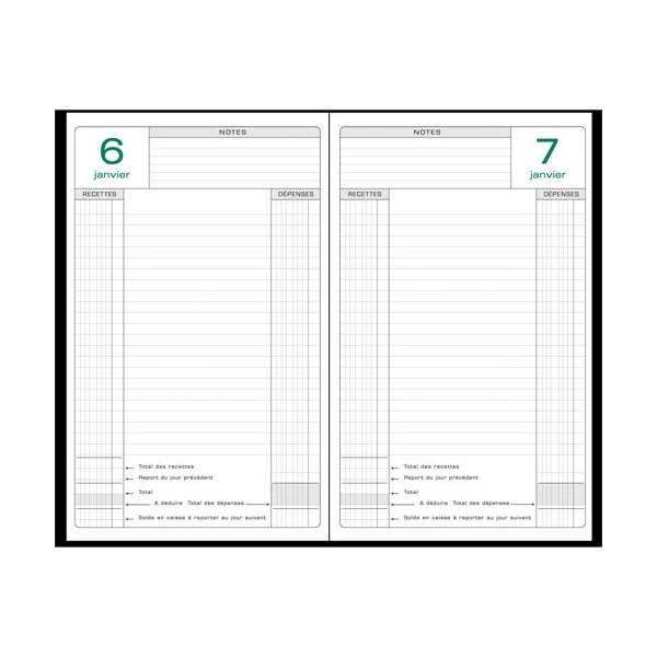 EXACOMPTA Agenda Perpétuel recettes/dépenses 1 jour par page, format 16 x 24 cm couverture noire