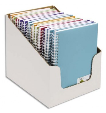 CANSON Carnet de notes 100 pages 120g A5 5 couleurs. Couverture en polypropylène assorties