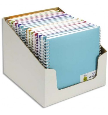 CANSON Carnets de notes 100 pages 120g 18,5 x 18,5 cm 5 couleurs. Couverture en polypropylène assorties
