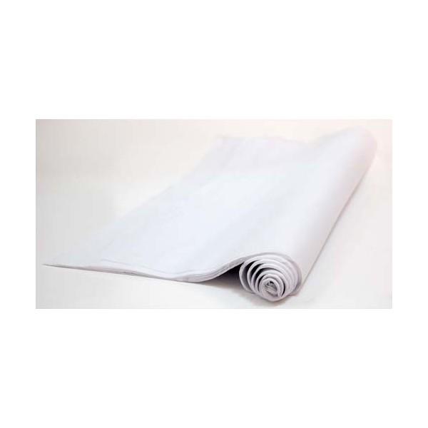 CANSON Rouleau de papier de soie 0,5 x 5 m blanc (photo)
