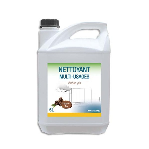 HYGIENE Bidon de Détergent Désodorisant pour sols et surfaces dures, 5 litres, parfum Pin