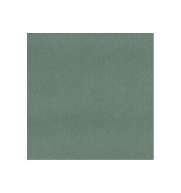 CLAIREFONTAINE Rouleau Papier Kraft coloris vert recto-verso 65g - Dimensions : 0.70 x 3 mètres