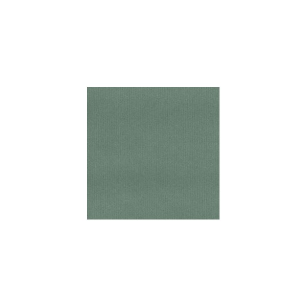 CANSON Rouleau Papier Kraft coloris vert recto-verso 65g - Dimensions : 0.68 x 3 mètres (photo)