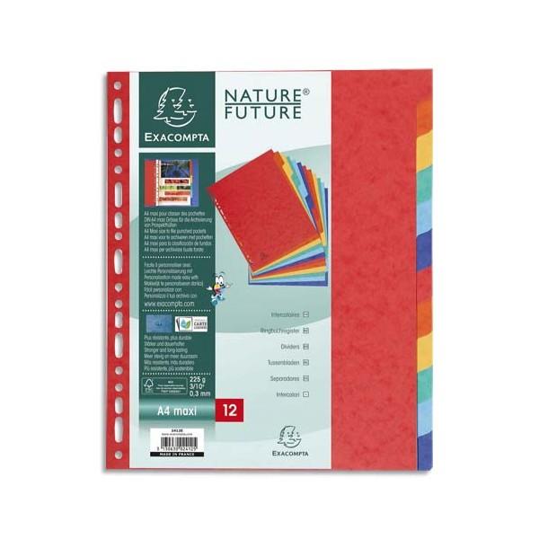 EXACOMPTA Jeu d'intercalaires 12 positions format 24 x 30 cm pour pochettes perforées. Carte lustrée 3/10e.