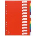 EXACOMPTA Intercalaires en polypropylène, format A4, 12 positions assortis pastel