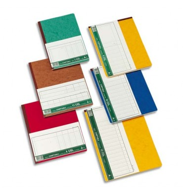 LE DAUPHIN Piqûre trace comptable folioté 24 x 32 cm 80 pages 13 colonnes