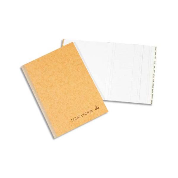 LE DAUPHIN Piqûre échéancier 22 x 17 cm 100 pages