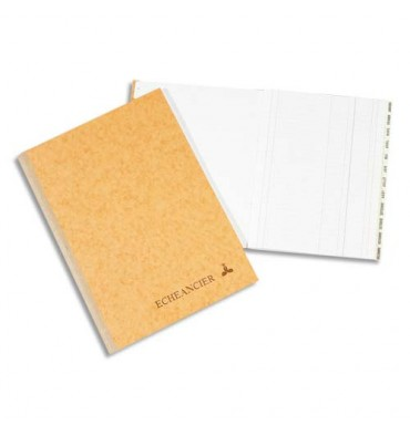 LE DAUPHIN Registre corrigé couverture noire 25 x 32 cm 300 pages quadrillé 5x5