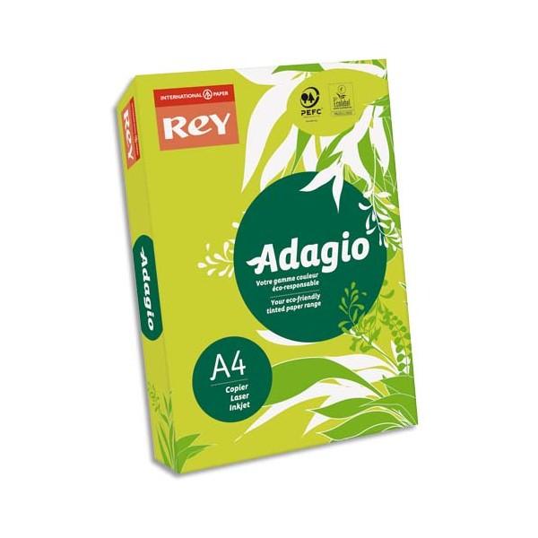 REY BY PAPYRUS Ramette de 500 feuilles papier couleur ADAGIO copieur, laser, jet d'encre 8