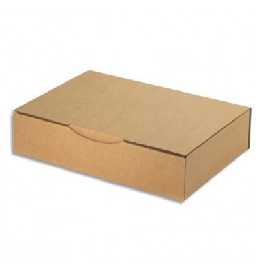 EMBALLAGE Boîte postale en carton simple cannelure havane - Dimensions : 31 x 21.5 x 7 cm